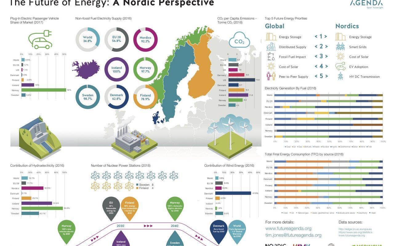 Future of Energy Infographic