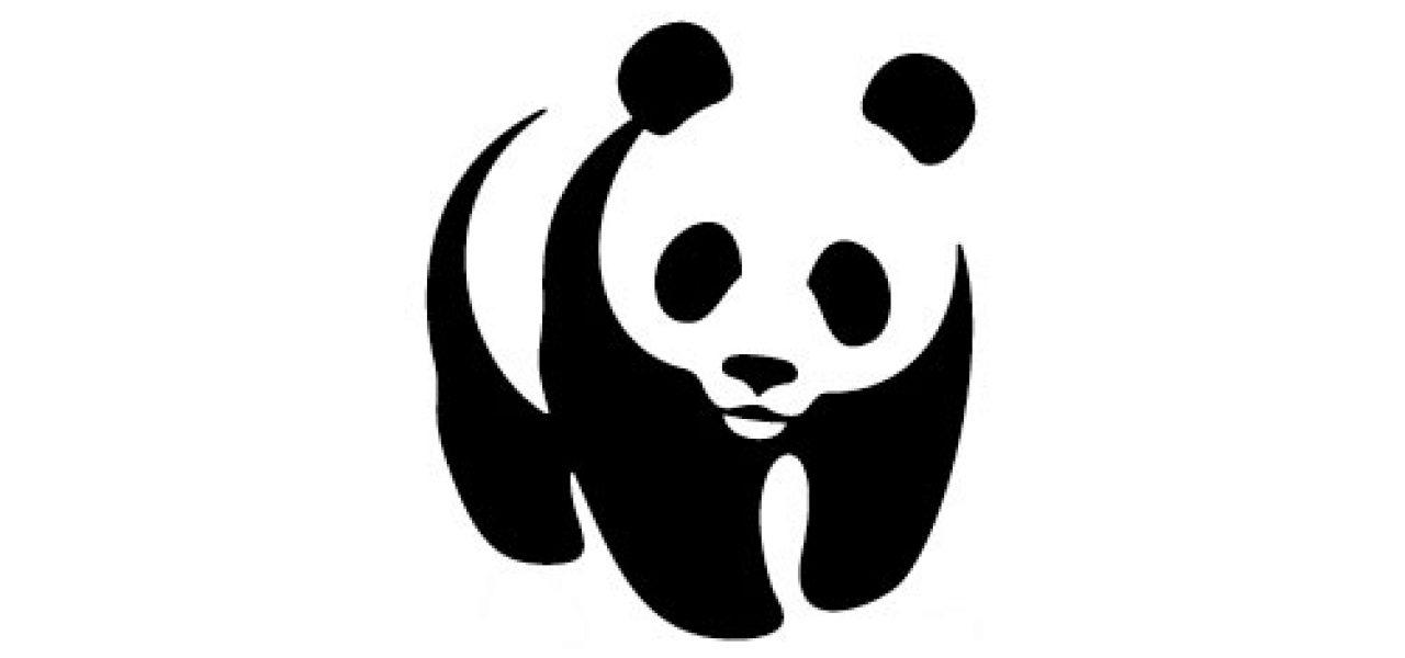 WWF Strategy